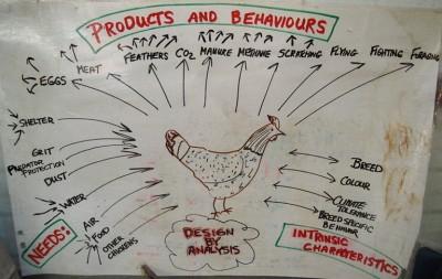 Productos y Comportamientos